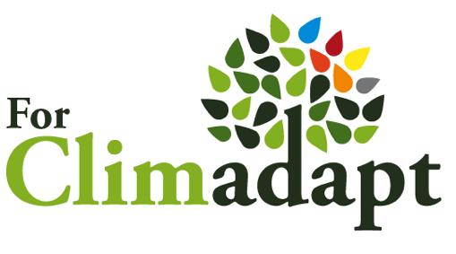 Traduction français-anglais pour l'association Internationale Forêts Méditerranéennes